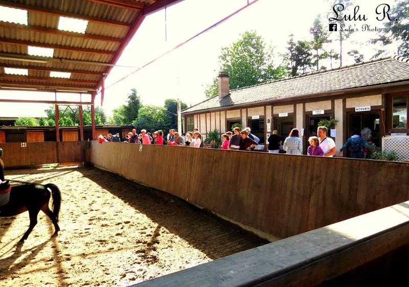 Ecole Equestre Scheidstein Illkirch-Graffenstaden Bas-Rhin animations variées toute l'année
