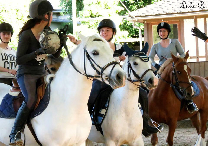 Ecole Equestre Scheidstein Illkirch-Graffenstaden Bas-Rhin Horse Ball