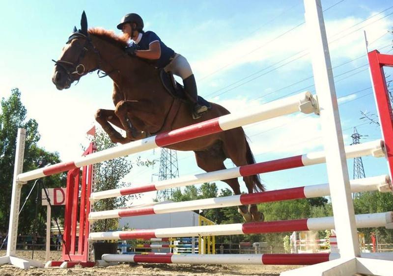 Ecole Equestre Scheidstein Illkirch-Graffenstaden Bas-Rhin Saut d'obstacles
