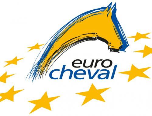 Salon Eurocheval à Offenbourg