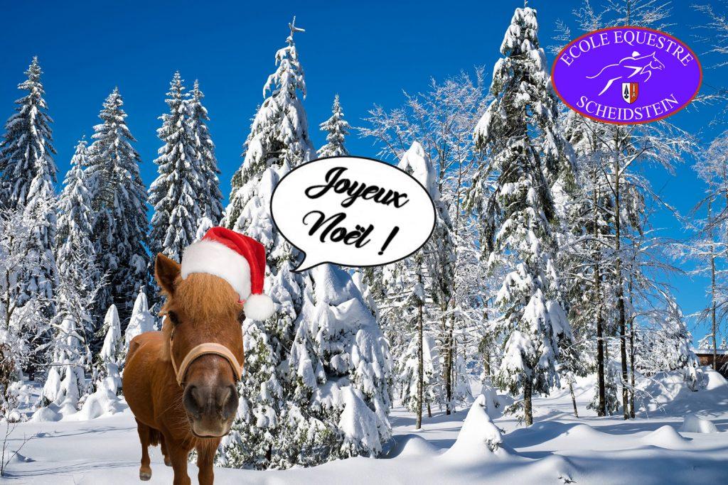 Les poneys de Noël